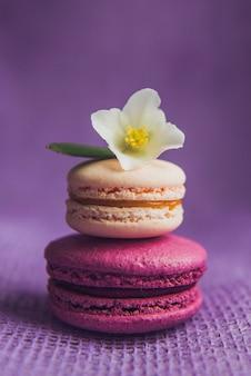 Französische macarons mit weißen blüten