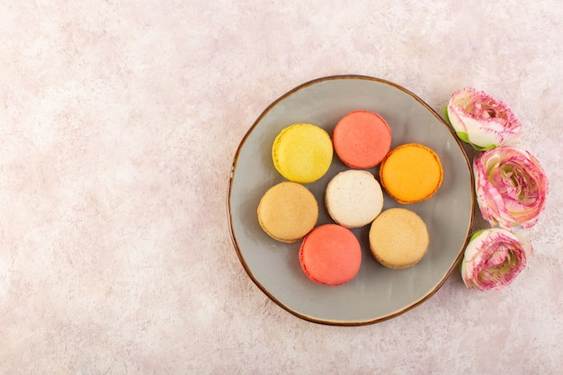 Französische macarons von oben mit rosen im teller auf der rosa tischkuchen-kekszuckerfarbe