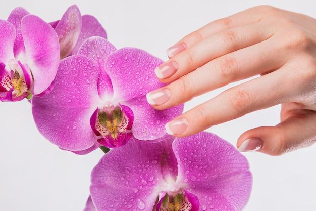 Französische maniküre- und orchideenblume