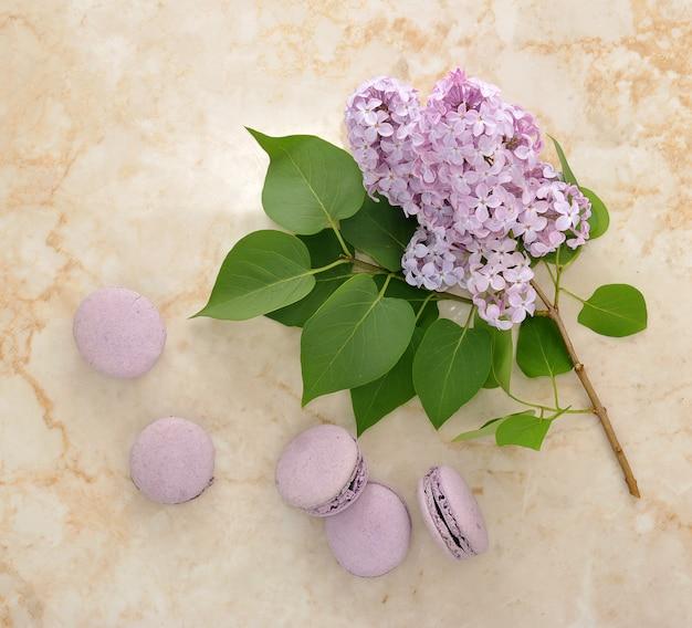 Französische purpurrote macarons mit lila blumen