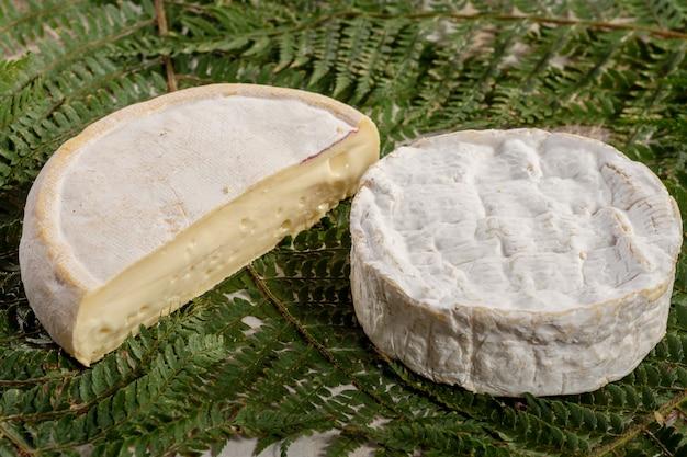 Französischer käse reblochon und camembert