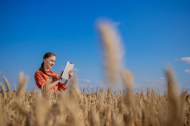 Frau agronom mit tablet-computer auf dem gebiet der weizenprüfung qualität und wachstum von pflanzen für die landwirtschaft