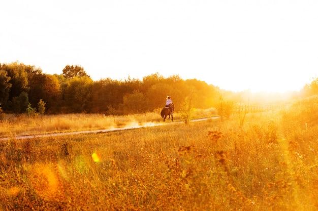 Frau auf pferd im park auf einem sonnenuntergang. pferde-reiten
