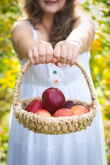 Frau bauer hände geben korb mit roten äpfeln, lächelnd. im garten im vintage-farbton. sommer- oder herbsternte.