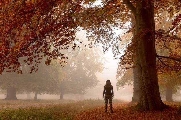 Frau, die alleine unter einem großen buchenbaum steht.
