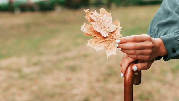 Frau, die blätter und einen regenschirm mit kopienraum hält