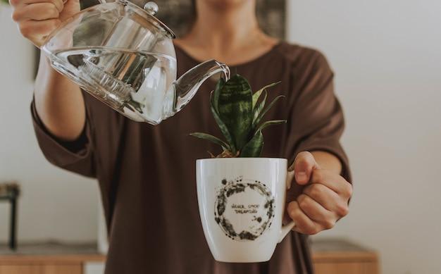 Frau, die eine pflanze in einem becher mit einer teekanne wässert