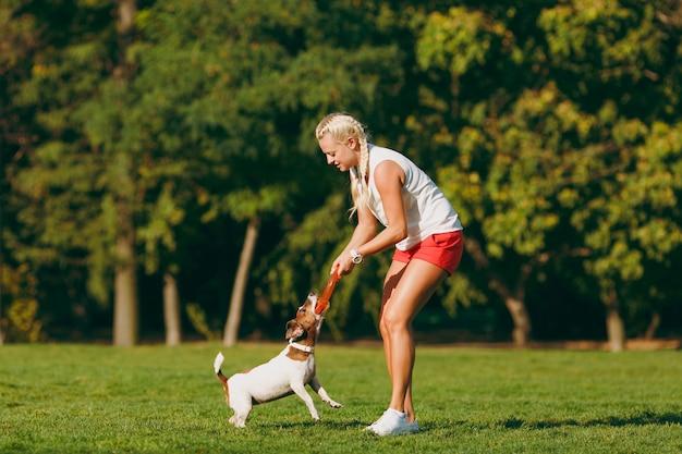 Frau, die einem kleinen lustigen hund orange flugscheibe wirft, der ihn auf grünem gras fängt. kleines jack russel terrier haustier, das draußen im park spielt. hund und besitzer im freien. tier im bewegungshintergrund.