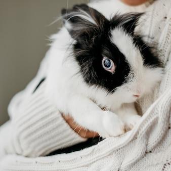 Frau, die entzückendes kaninchen streichelt