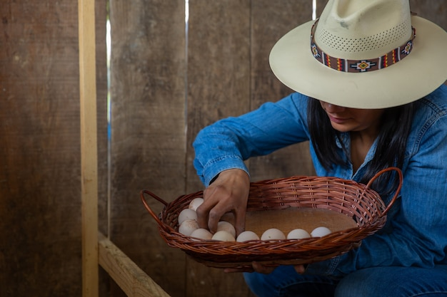 Frau, die frische eier vom bauernhof sammelt