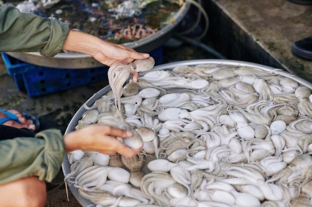 Frau, die frische kraken kauft