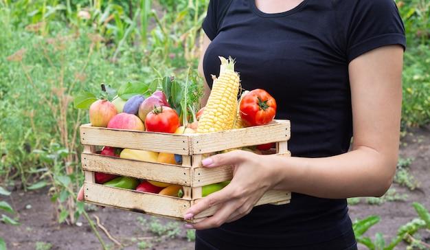 Frau, die holzkiste mit öko-bio-gemüse und früchten hält. spenden- oder lebensmittellieferkonzept
