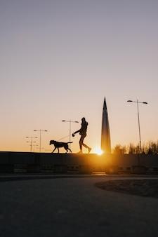 Frau, die ihren hund bei sonnenuntergang schönen sonnenuntergang vor dem hintergrund moderner gebäude spazieren geht