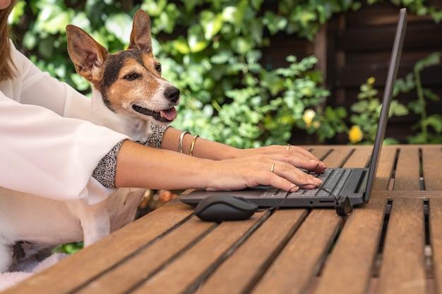 Frau, die im garten mit ihrem hund auf den laptop schaut