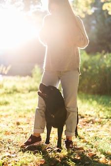 Frau, die im sonnenlicht mit labrador am park steht