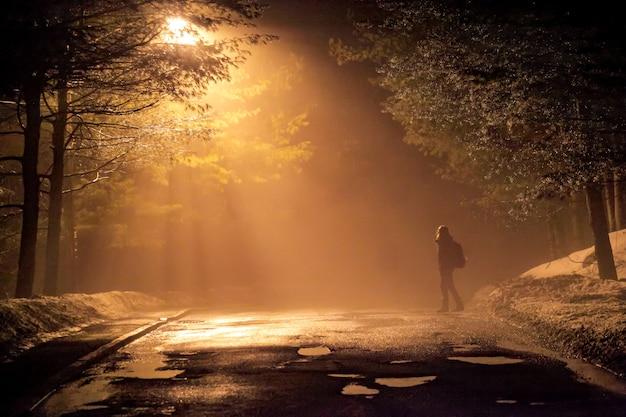 Frau, die in einer dramatischen mystischen szene mit warmen farben allein auf die neblige straße geht