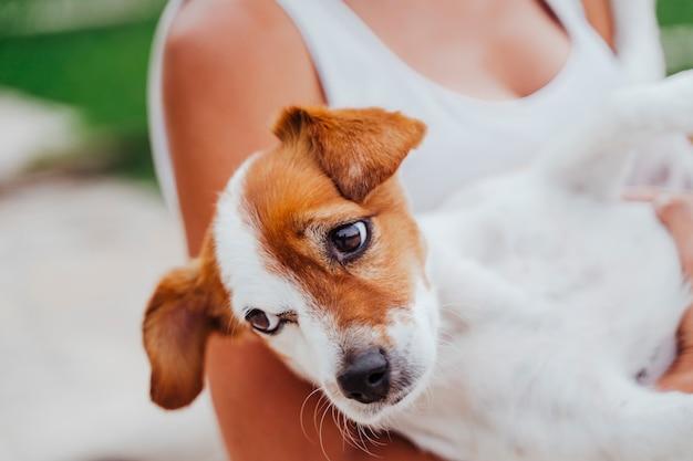 Frau, die in ihren armen niedlichen kleinen jack-russell-hund hält