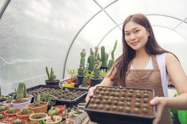 Frau, die kaktus im gewächshausgartencenter betrachtet, asiatische junge frau, die kleinen kaktus betrachtet