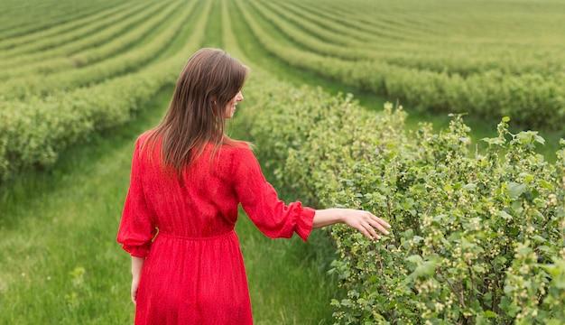 Frau, die pflanzen berührt