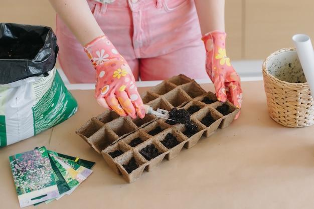 Frau, die samen in torfbechern pflanzt. das frühlingspflanzen besprüht den boden mit einem hausgartengerät.