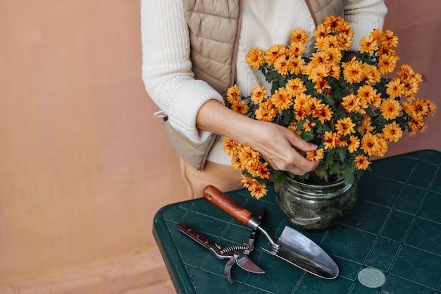 Frau, die topfblumen im garten verpflanzt.