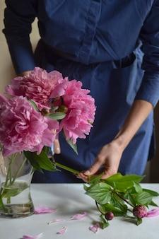 Frau, florist stellte eine pfingstrose in eine vase. schöne rosa pfingstrosen der pfingstrosen in einem glas. nahansicht.