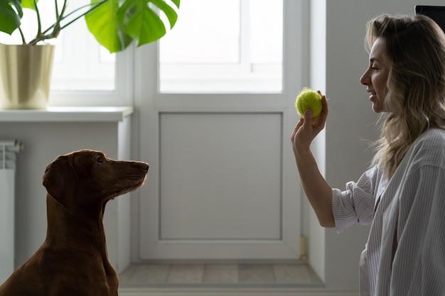 Frau hält ball, der mit hund spielt, glückliche frau, die sich nach der arbeit zu hause mit der pflege des haustieres verbindet