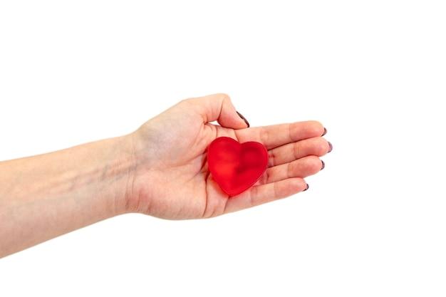 Frau hält einen roten herd. frauenhände. draufsicht. valentinstag konzept.
