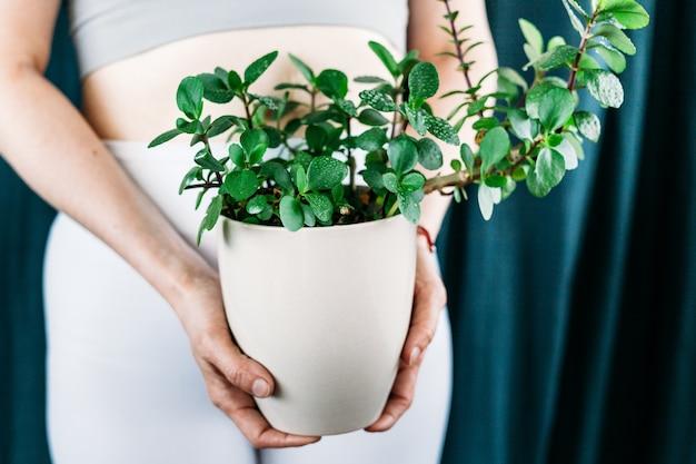 Frau hält einen topf mit grünen pflanzen