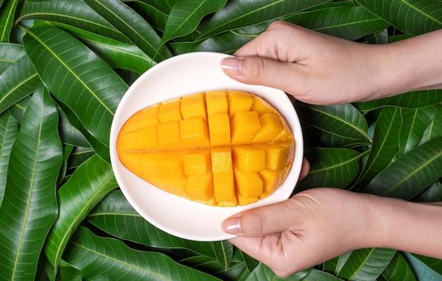 Frau halten gehackte frische saftige schöne mango über grünen blättern
