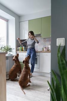 Frau hundebesitzer entspannen sich nach der arbeit vom heimtraining und spielen mit zwei drahthaarigen vizsla