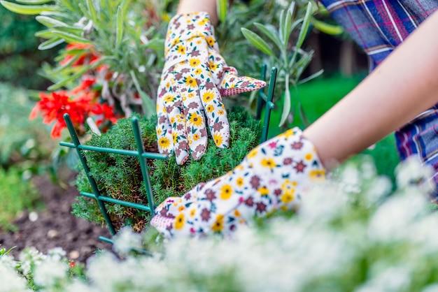 Frau im garten arbeiten. gärtner, der um ihren anlagen in einem garten sich kümmert