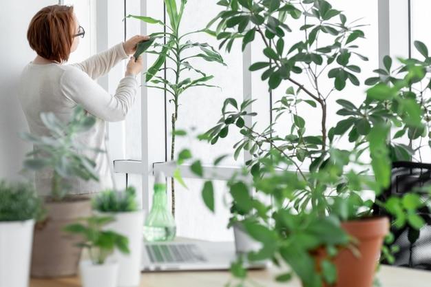 Frau im gewächshaus kümmert sich mit sprühgerät und laptop um pflanzen in der nähe ihres arbeitsplatzes.