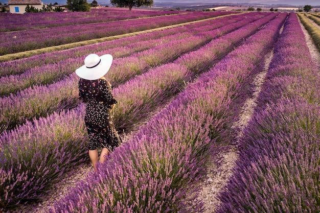 Frau im weißen hut in der sommersonnenuntergangslandschaft des lavendelfeldes nahe valensole