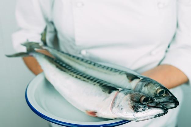 Frau in der kleidung des küchenchefs zeigt ein gericht mit frischem fisch. küchenkonzept. frische makrele auf einem weißen teller.