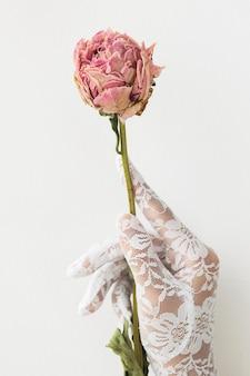 Frau in einem spitzenhandschuh mit einer getrockneten rosa pfingstrosenblume