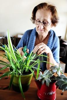 Frau kümmert sich um ihre pflanzen