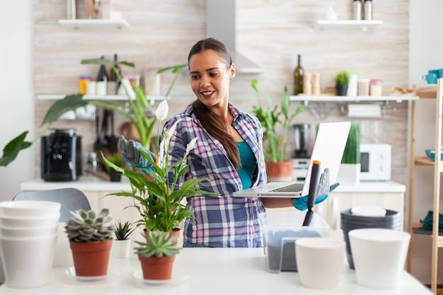 Frau liest über ihre blumen im internet mit laptop in der küche