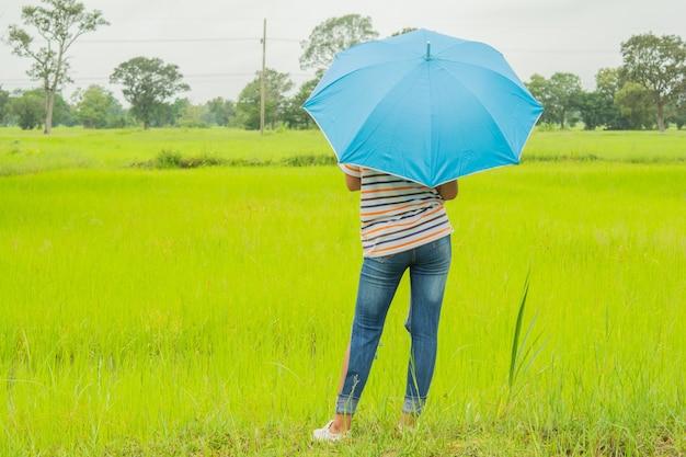 Frau mit blauen regenschirm- und grünen reisfeldern.