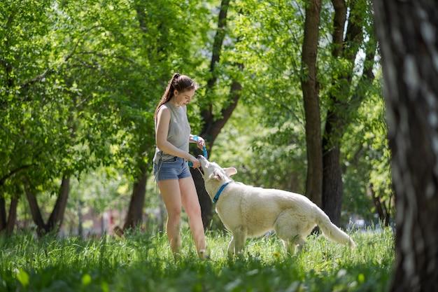 Frau mit dem apportierhund, der auf dem park während des sonnenuntergangs oder des sonnenaufgangs spielt