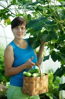 Frau mit geernteten gurken