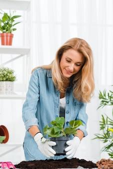 Frau mit handschuhen blume pflanzend
