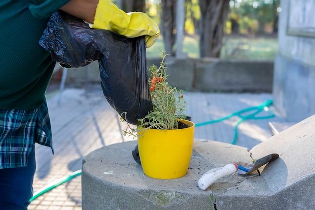 Frau mit handschuhen ohne ein sichtbares gesicht, das schmutz in einen topf mit einer blühenden pflanze in ihrem garten entleert