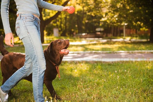Frau mit ihrem hund, der auf gras im park geht