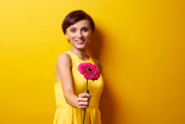 Frau mit rosa gerbera-gänseblümchen