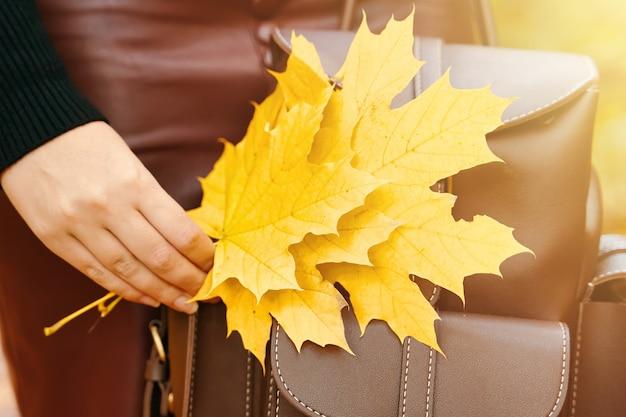 Frau mit rucksack und laubstrauß aus herbstblättern stilvolle frau in den sonnenfotos für die ...