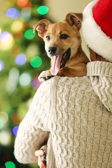 Frau mit weihnachtsmütze, die an der schulter kleinen lustigen süßen hund auf weihnachtshintergrund hält