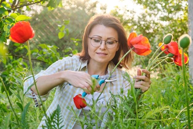 Frau mittleren alters in der natur schneidet blumen rote mohnblumen