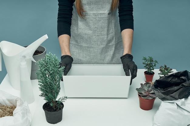Frau pflanzt zimmerpflanzen und blumen in erde und töpfen