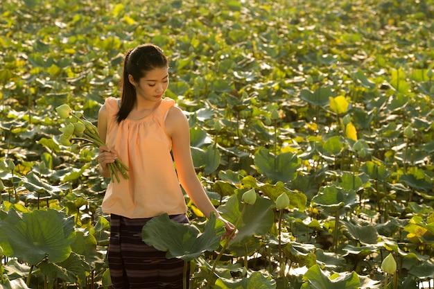 Frau pflücken lotus